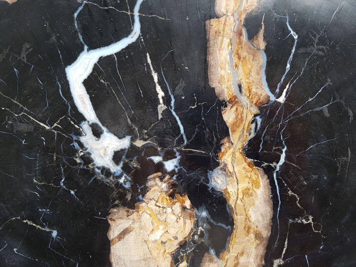 Plate petrified wood 32044