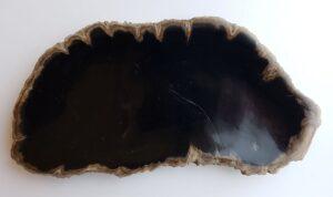 Plate petrified wood 33024d