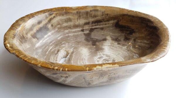 Bowl petrified wood 33035