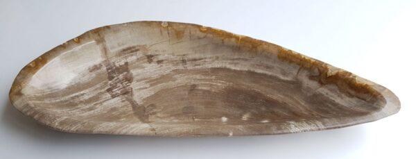Bowl petrified wood 33313