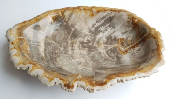 Bowl petrified wood 33321