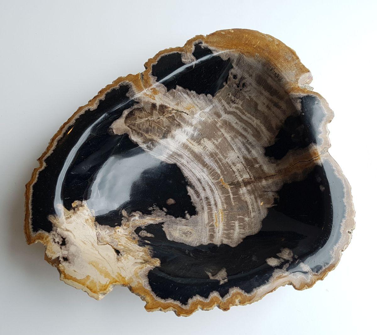 Bowl petrified wood 33322