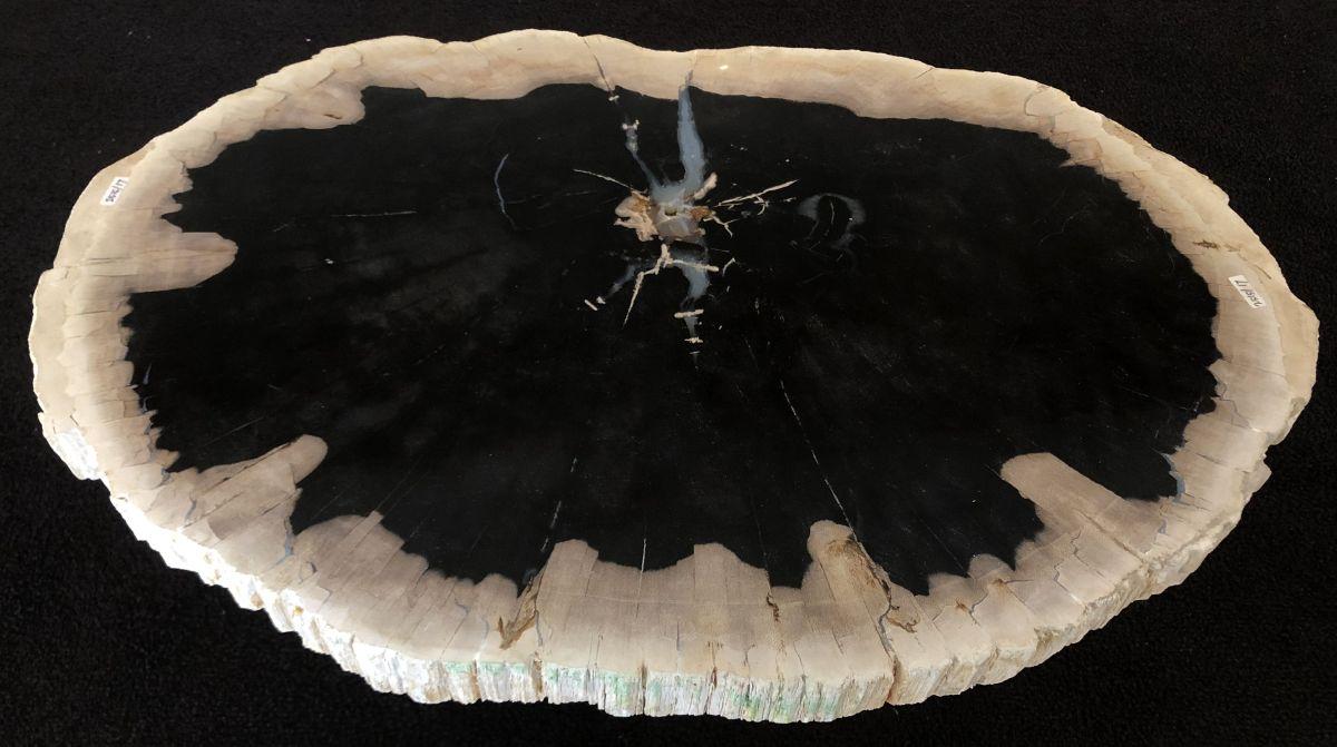 Salontafel versteend hout 33171