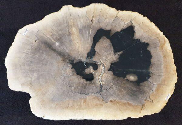Salontafel versteend hout 33183