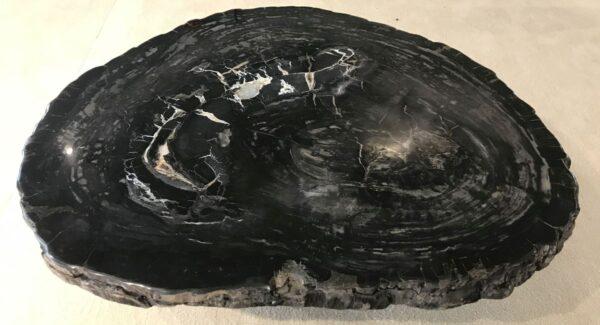 Salontafel versteend hout 33209