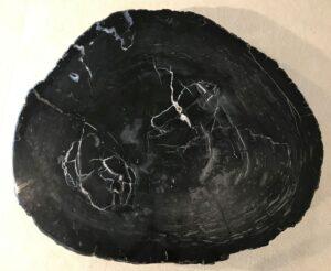 Salontafel versteend hout 33211