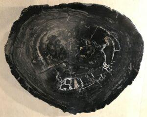 Salontafel versteend hout 33214