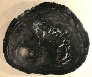 Salontafel versteend hout 33217
