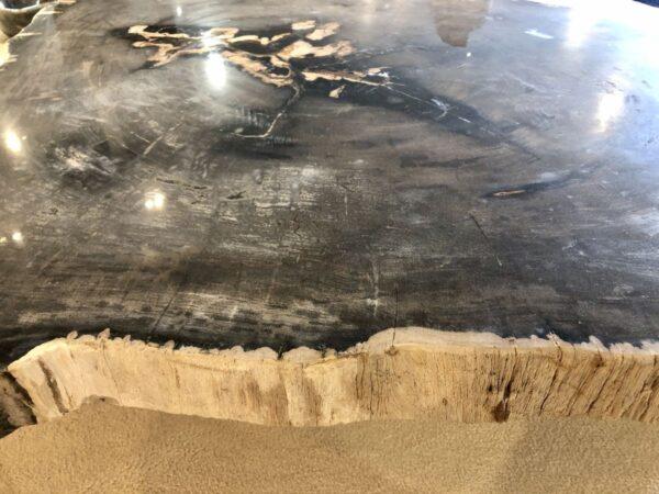 Salontafel versteend hout 33223