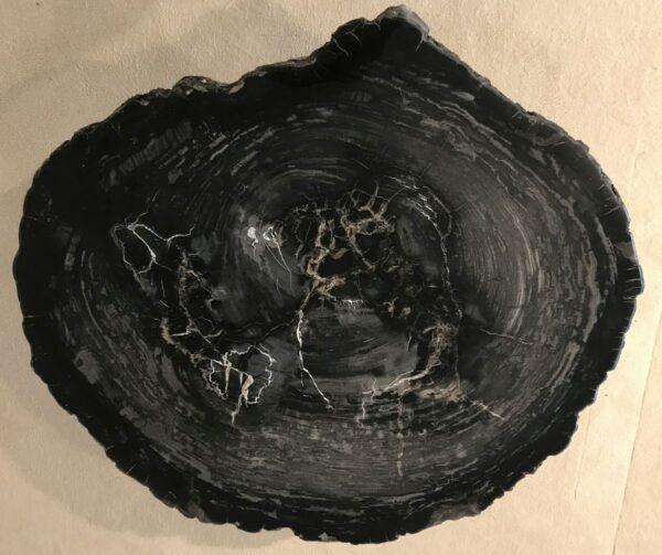 Salontafel versteend hout 33229