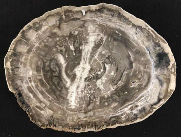 Salontafel versteend hout 33268