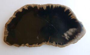 Teller versteinertes Holz 33024b