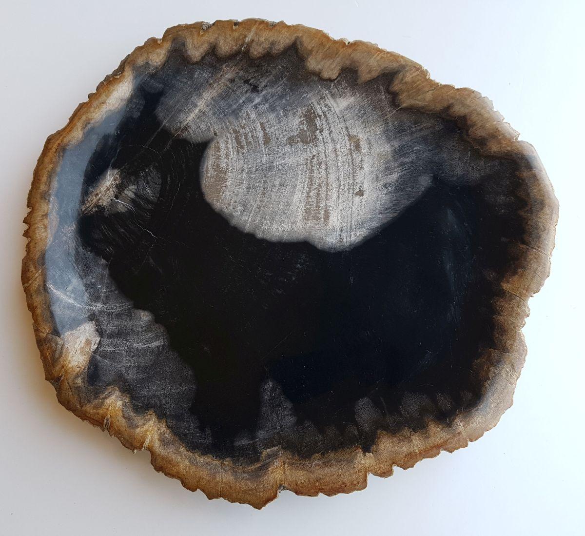 Teller versteinertes Holz 33030e