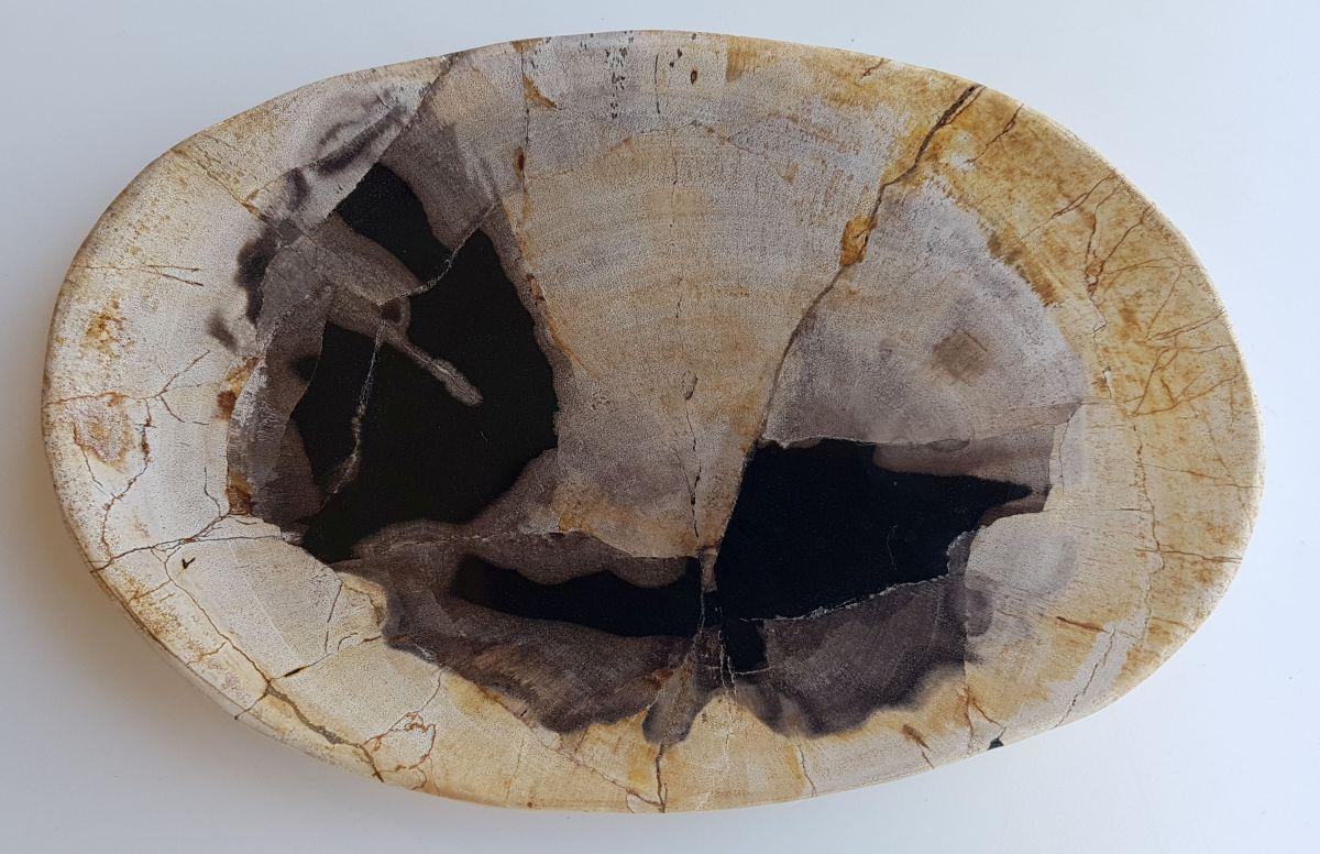 Teller versteinertes Holz 33045e