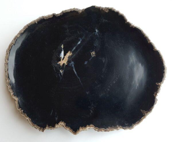 Teller versteinertes Holz 33047c