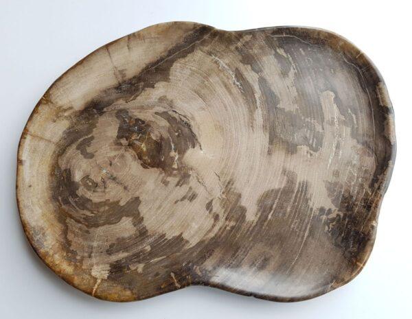 Teller versteinertes Holz 33048j