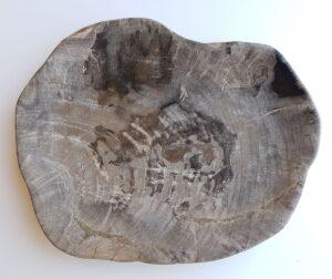 Teller versteinertes Holz 33049a