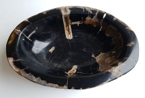 Schale versteinertes Holz 33061