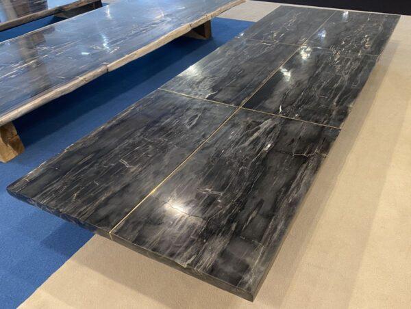 Table en bois pétrifié 33248