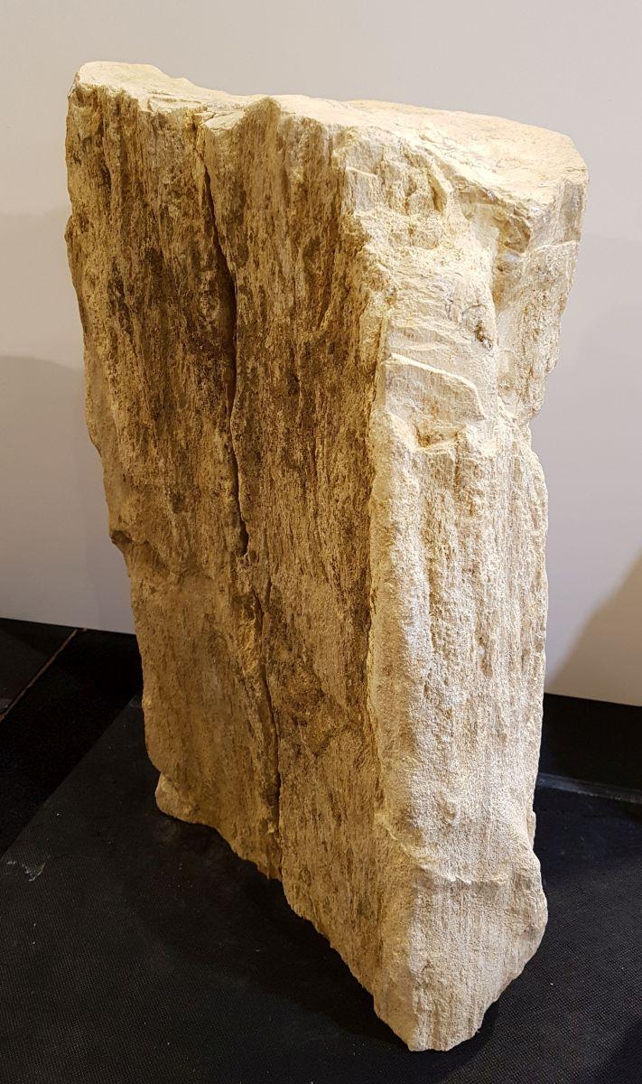 Pierre tombale bois pétrifié 33074