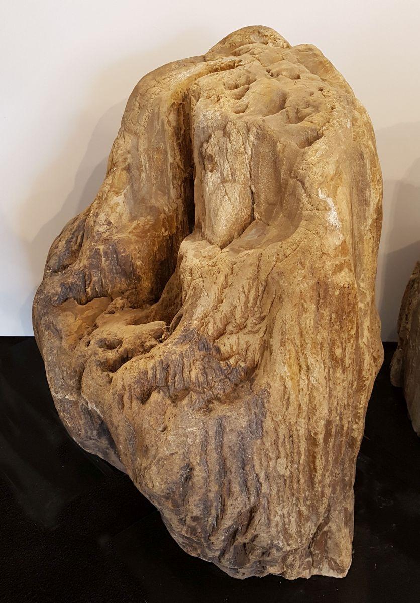 Pierre tombale bois pétrifié 33075
