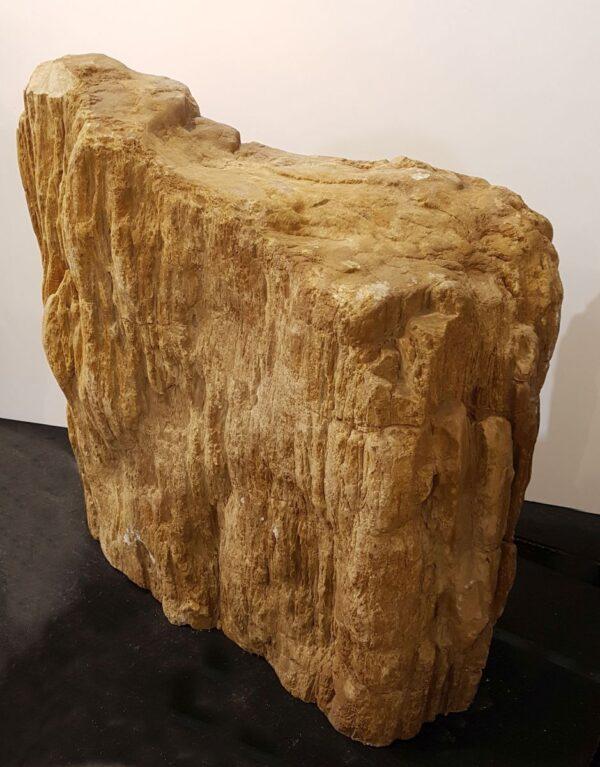 Pierre tombale bois pétrifié 33078