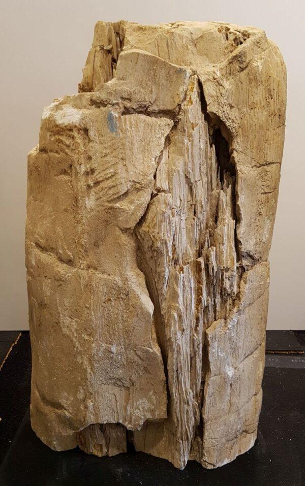 Lápida madera petrificada 33077