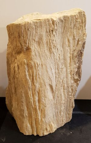 Memorial stone petrified wood 33074