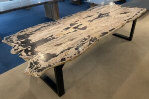 Table top petrified wood 33254