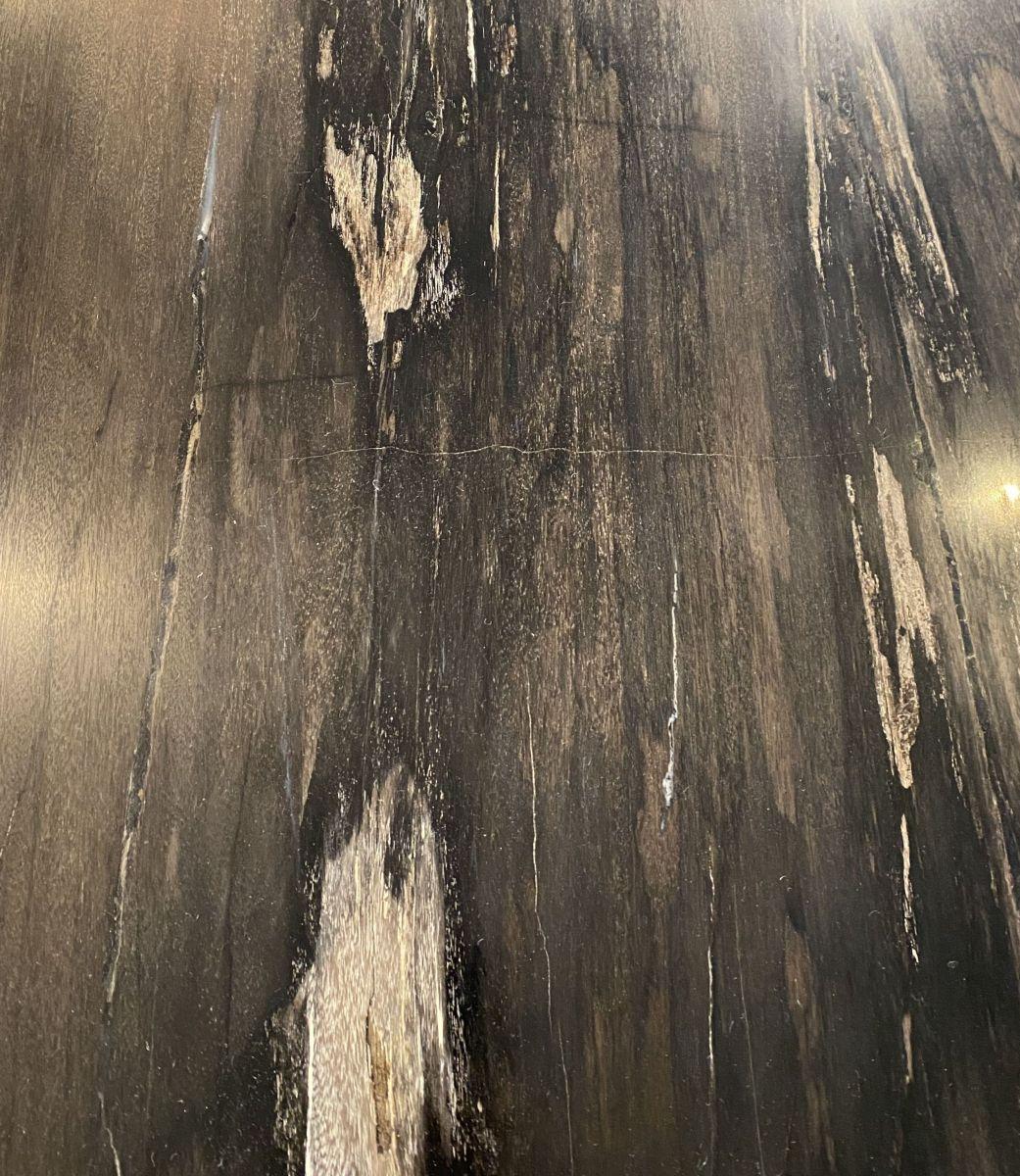 Tafelblad versteend hout 33250