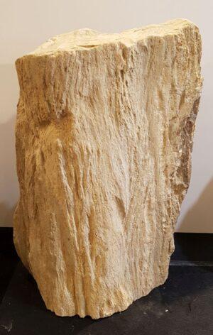 Grabstein versteinertes Holz 33074