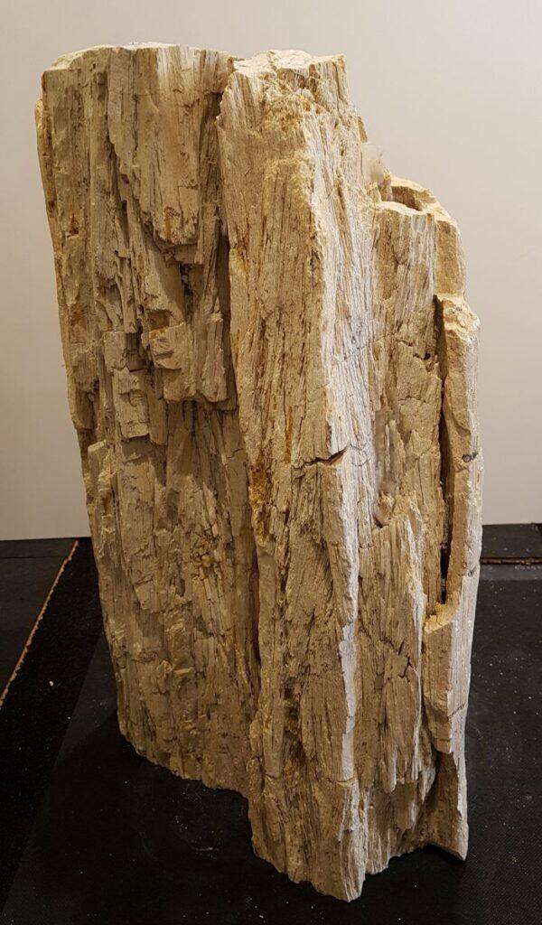 Grabstein versteinertes Holz 33077
