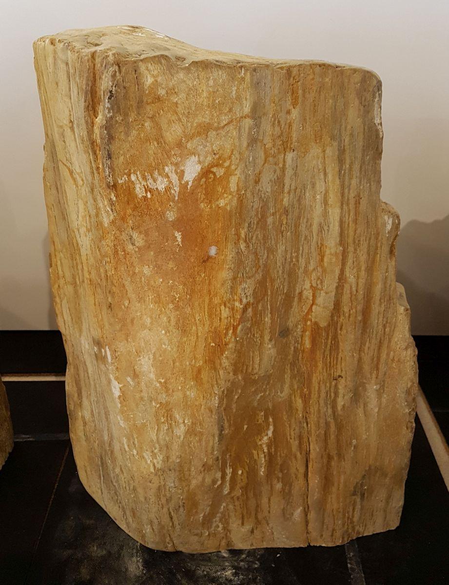 Grabstein versteinertes Holz 33083