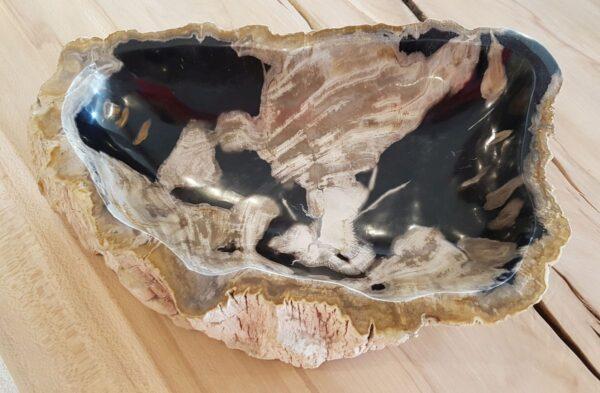 Schale versteinertes Holz 28738