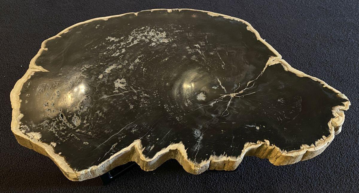 Coffee table petrified wood 34175