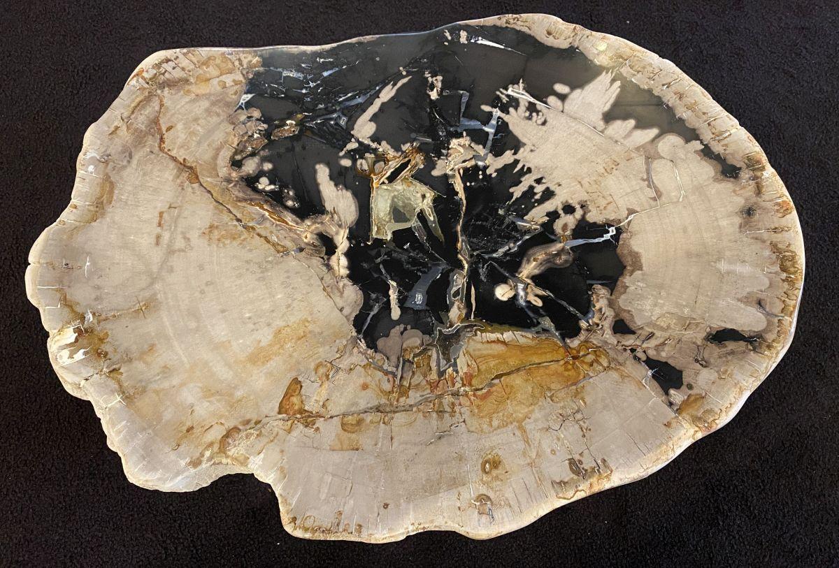 Coffee table petrified wood 34188
