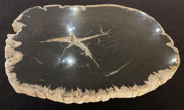 Coffee table petrified wood 34192