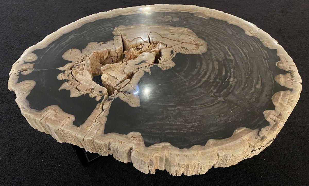 Coffee table petrified wood 34204