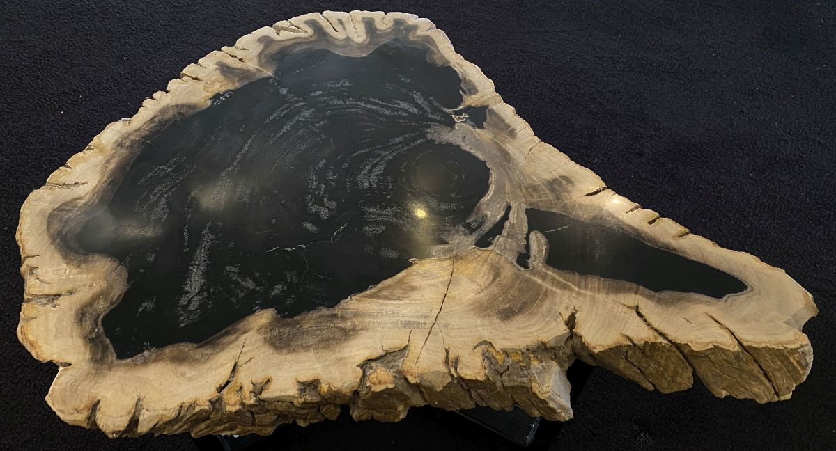 Coffee table petrified wood 34240