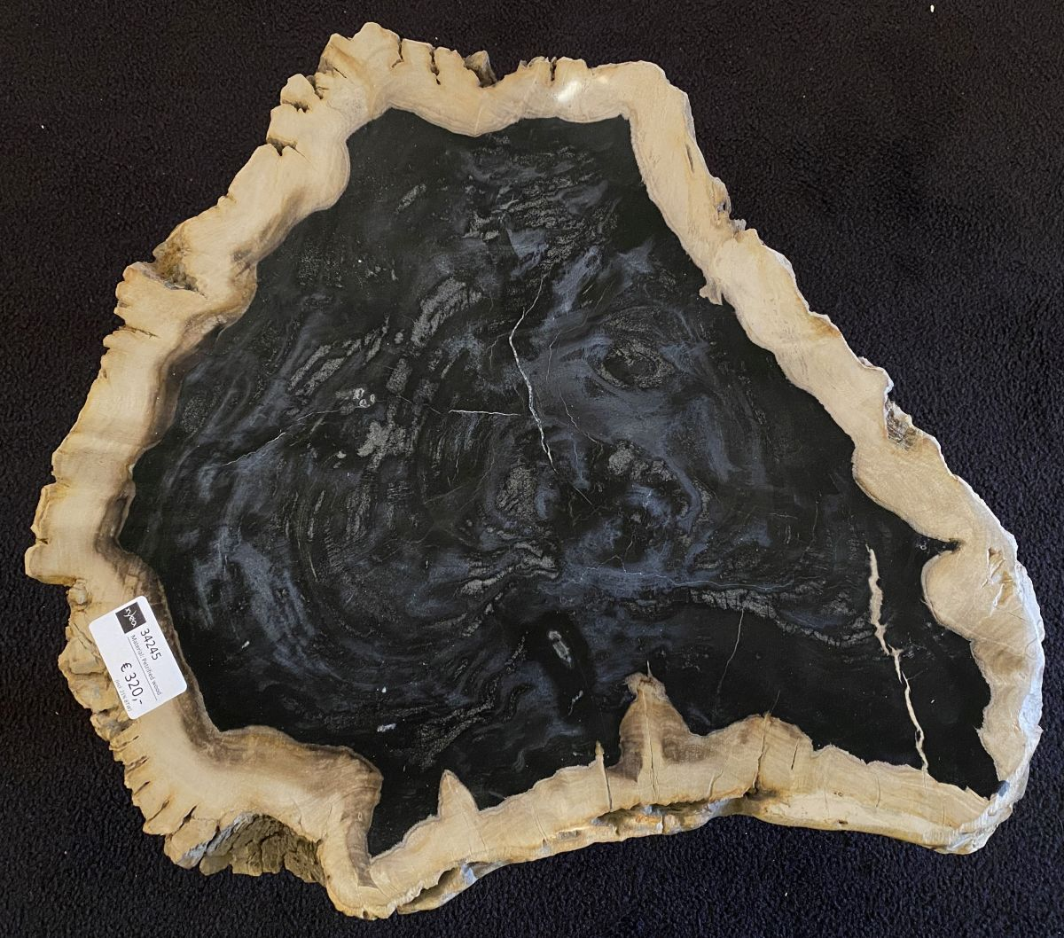 Coffee table petrified wood 34245