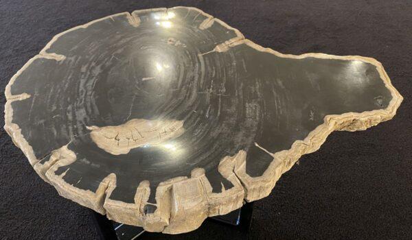 Coffee table petrified wood 34256
