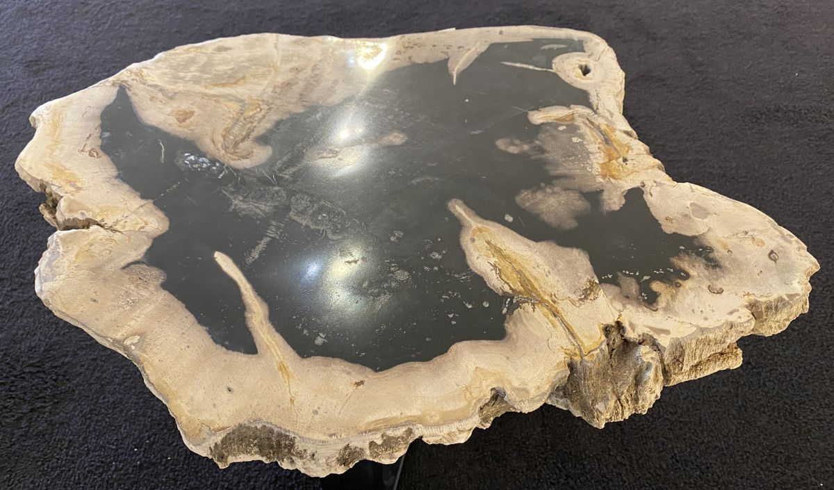 Coffee table petrified wood 34268