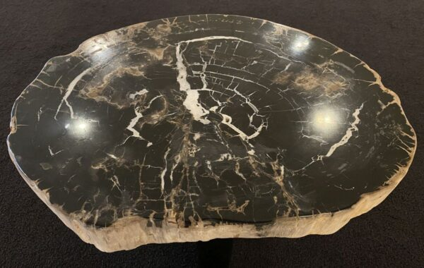 Coffee table petrified wood 34296