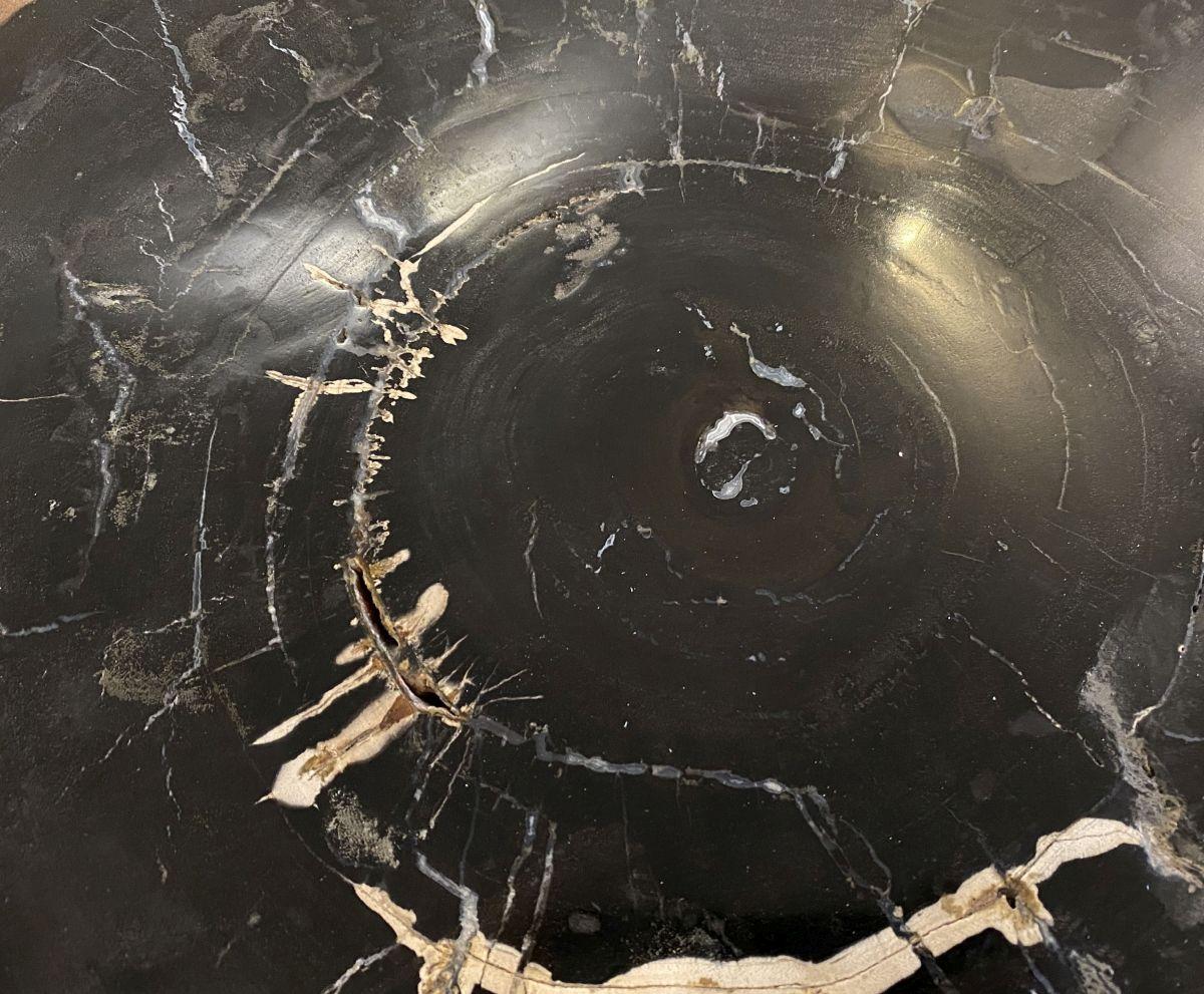 Coffee table petrified wood 34304