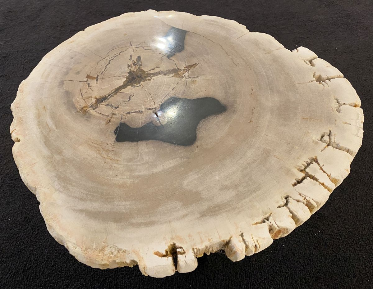 Coffee table petrified wood 34386d