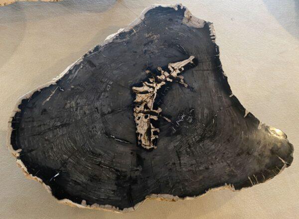 Couchtisch versteinertes Holz 34125