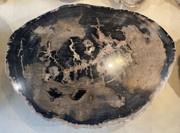 Couchtisch versteinertes Holz 34153