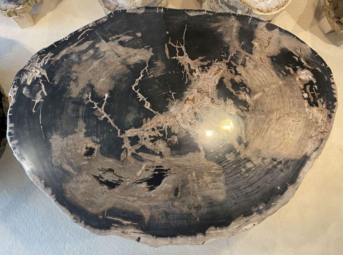 Couchtisch versteinertes Holz 34155
