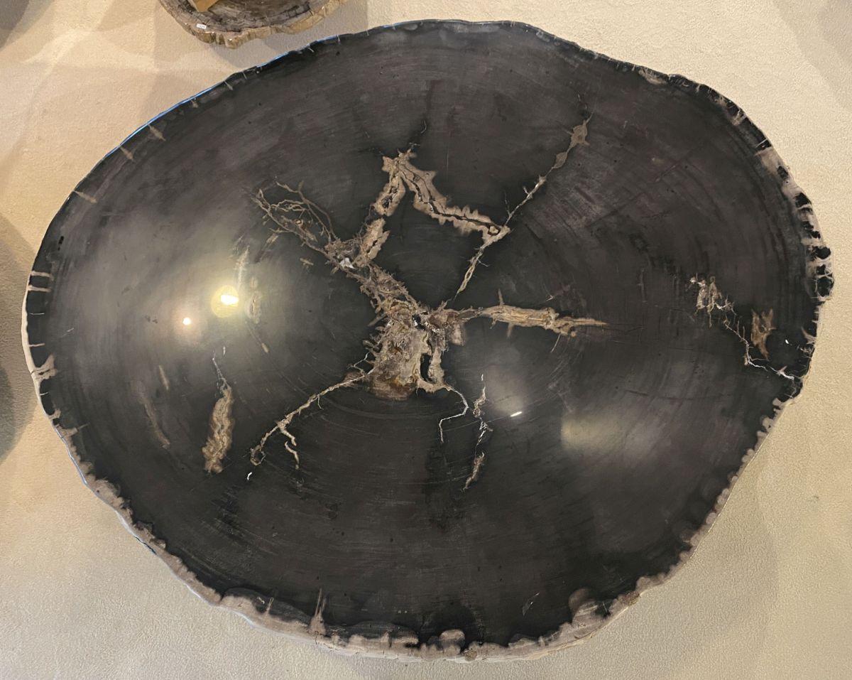 Couchtisch versteinertes Holz 34156