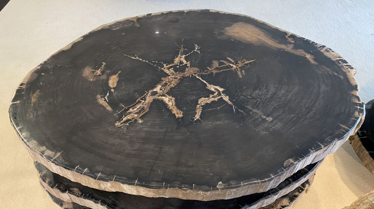 Couchtisch versteinertes Holz 34157